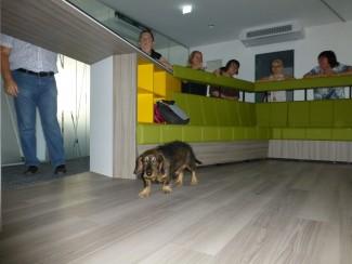 Der neue Lounge-Bereich zum angeregten Austausch: Für Mitarbeiter/innen und Besucher/innen! (und Hunde)
