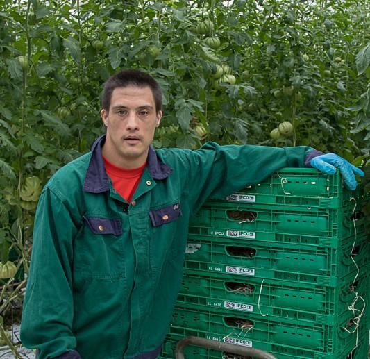 Herr Steffler gefällt die Arbeit in der Gärtnerei